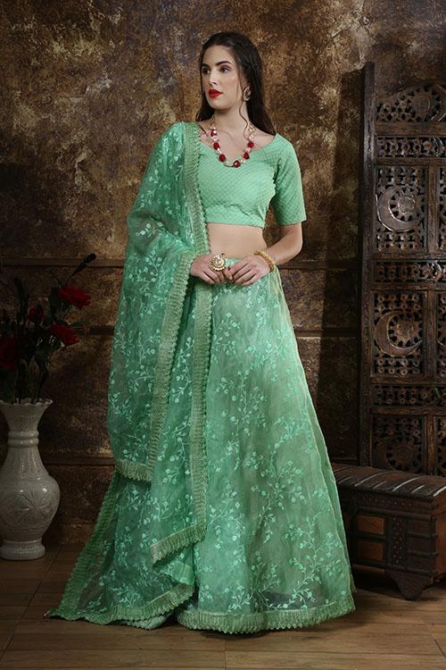 Mint Green Organza Embroidered Work Lehenga Choli Collection (5)