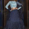 Navy Blue Jacqueard Weaving Semi Stitched Lehenga Choli