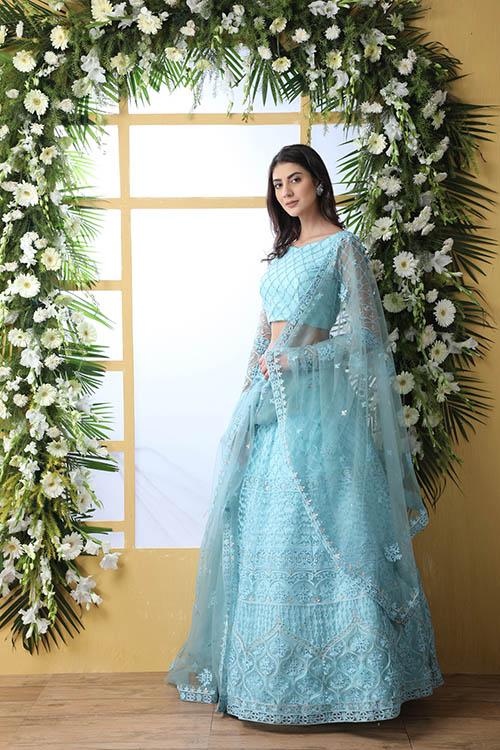 Sky Blue Thread Embroidered With Net Fabric Lehenga Choli (4)